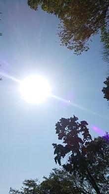 橘佑佳の「自信を取り戻し、あなたの変化を応援する」ブログ-鎌倉