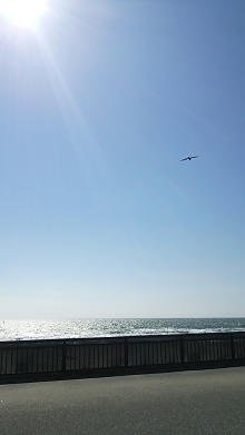 橘佑佳の「自信を取り戻し、あなたの変化を応援する」ブログ-由比ヶ浜